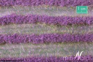 MININATUR 792-22S - Lavender field strips summer